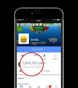 תוכנת לייקים לפייסבוק